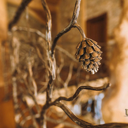 A hand wrought iron railing - A Pine