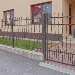 A wrought iron fence CRAZY
